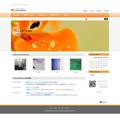 ホームページテンプレートp39橙