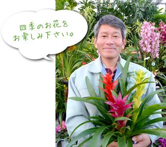 四季のお花をお楽しみ下さい。