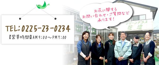 TEL:0225-23-0234 お花に関するお問い合わせ・ご質問など承ります!