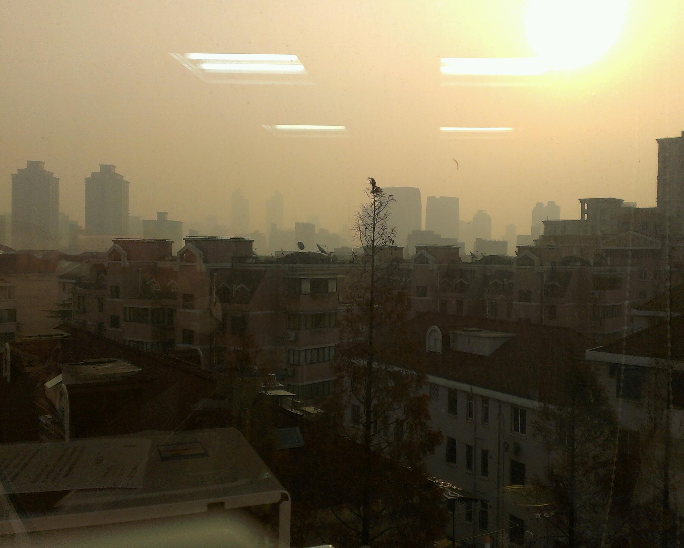 事務所の窓からの風景