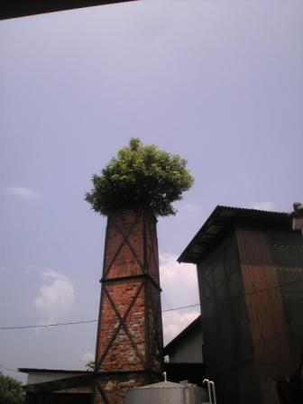 大和一煙突