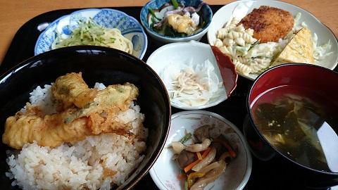 坂元食堂ランチ3