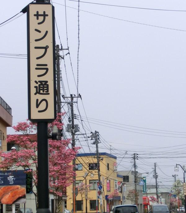 サンプラ通り(1)