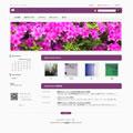 ビジネス2A(紫)
