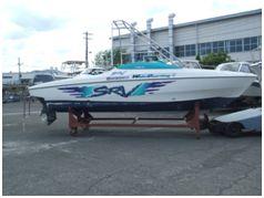 SRV20 80