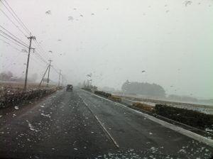 雪2012-2