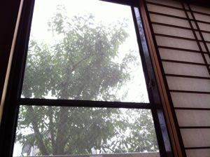 鎌倉の宿の窓から