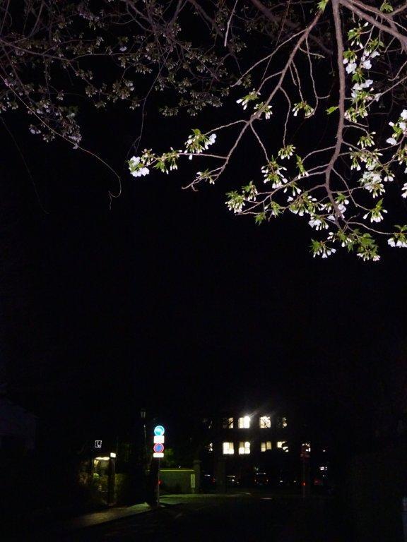 (9)夜間パト