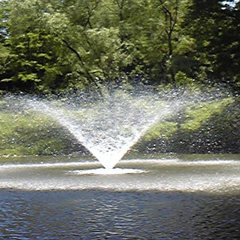 創大文学の池