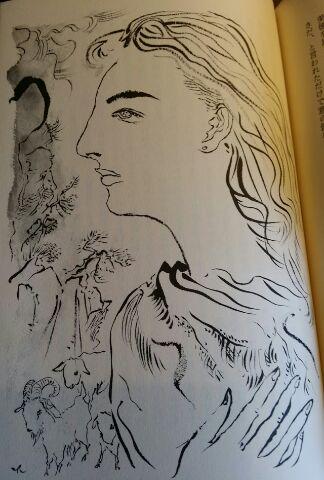 美貌のマルセラ