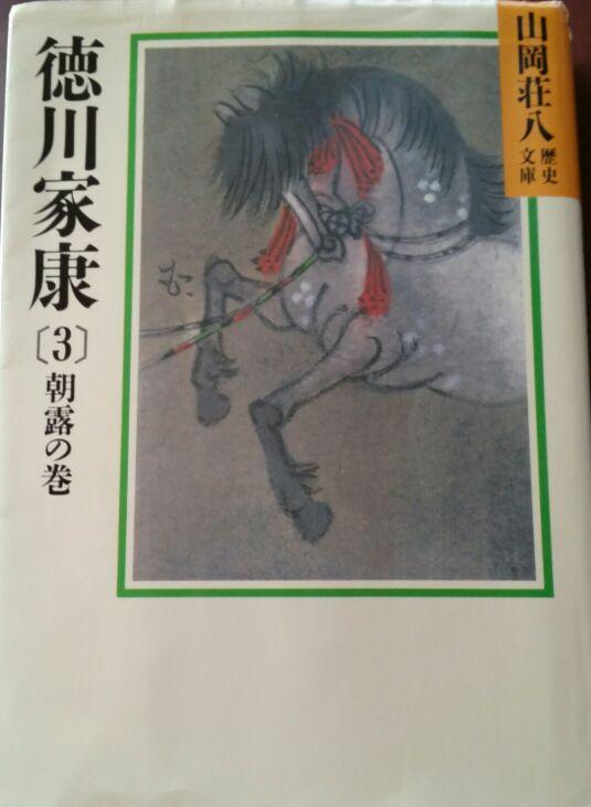 徳川家康3巻